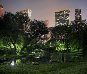 Photo of Central Park on a misty foggy night in New York City. taken at the pond near 59th street and Columbus avenue.